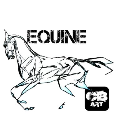 Equine Art Collection