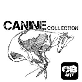 Canine Collection
