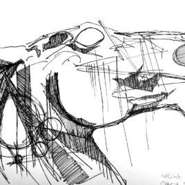 Horse Head. Study 1