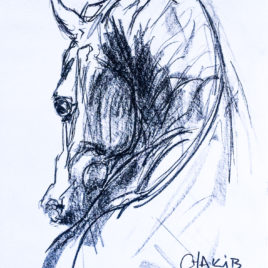 Head. Etude 5. Charcoal Drawing